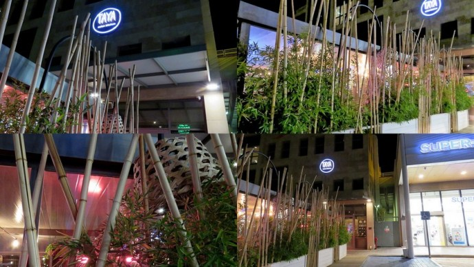 restoran_taya_11-01-001