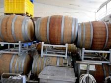 Winery_Harizi_Amir_IMG_1915-001