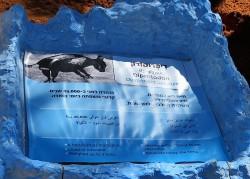 Diprotodon IMG_0863 (2)