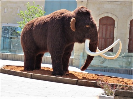 Woolly mammoth IMG_0861 (2)
