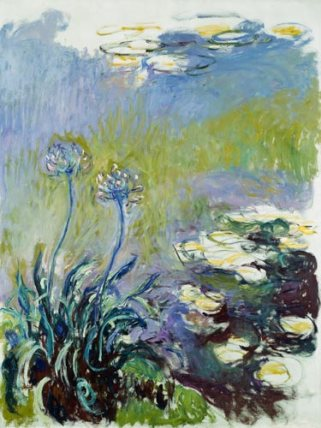 _agapanthus_claude_monet-the_agapanthus