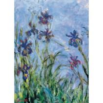 _Monet_Sad_Kart_ Monet's Garden, the Irises_Sin_IRISES_2