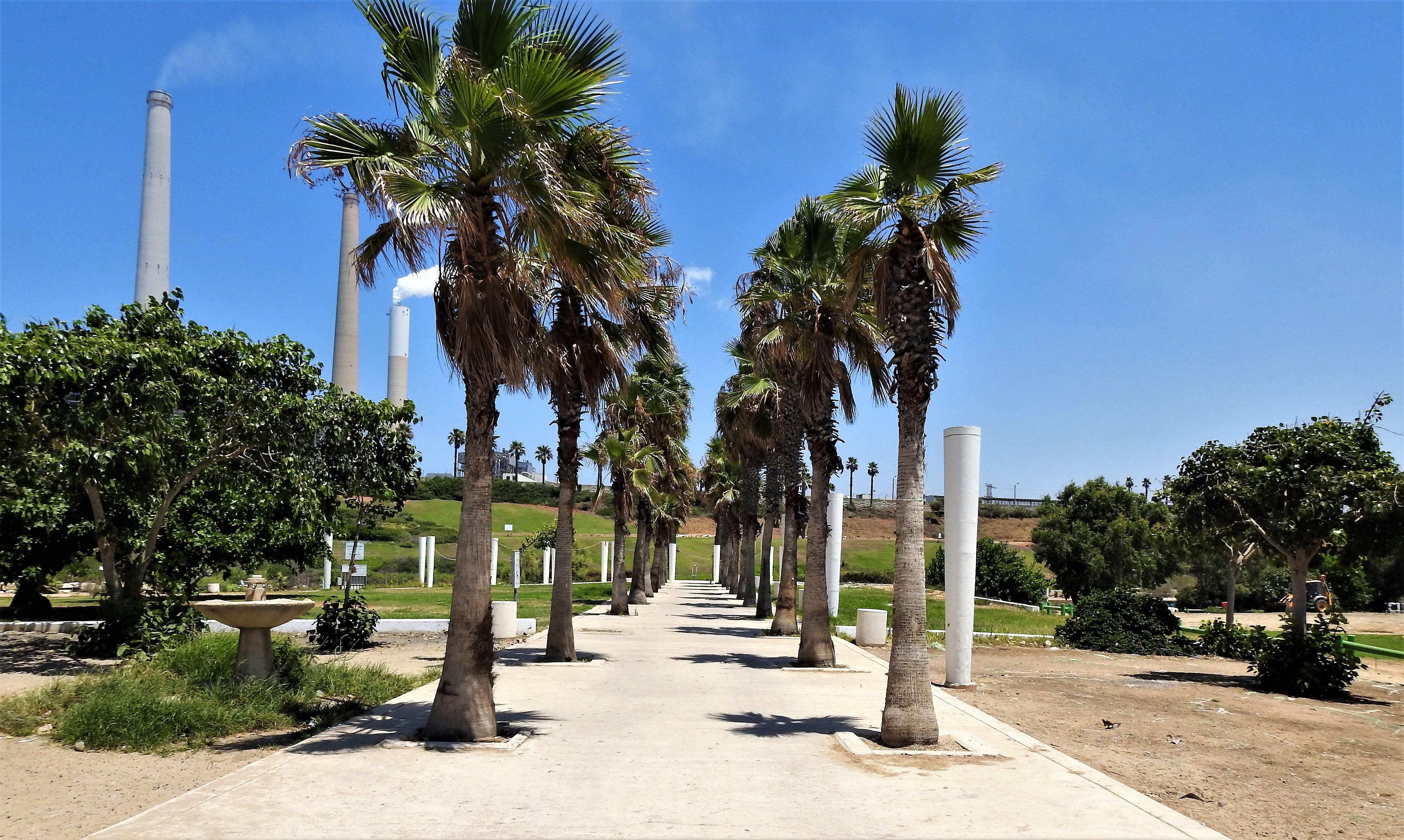 Фото монастыря святого герасима в израиле одно