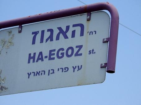 Oreh_Egoz_DSCN1727-003